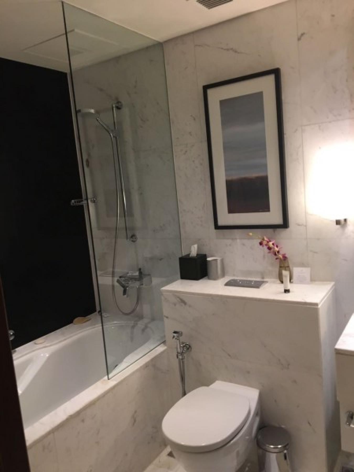 Furnished Studio Apt in The Address Dubai Mall