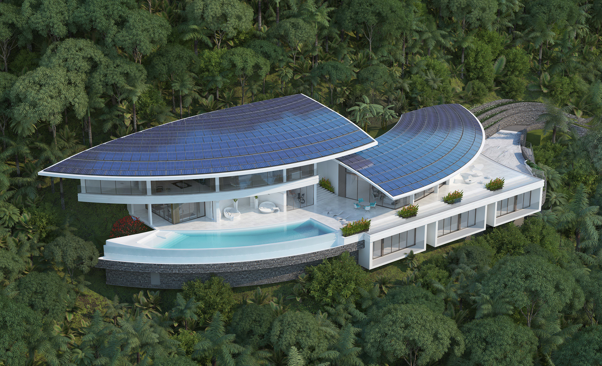 Villa Tropicbird