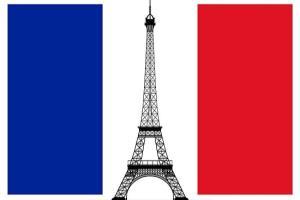 Portfolio for French Translation 15+ yrs
