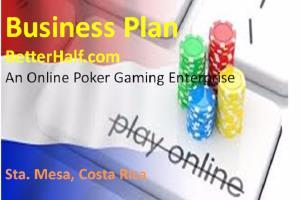 Portfolio for Business proposal writing