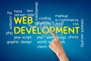 Portfolio for Websites and Web/App Software