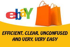 Portfolio for eBay Store Management