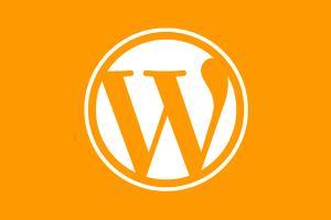 Portfolio for Wordpress Websites + eCommerce