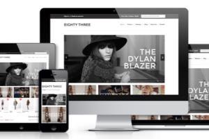 Portfolio for Shopify Development