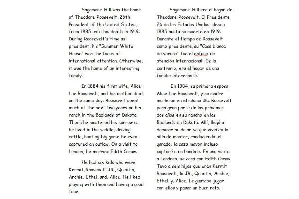 Portfolio for Spanish Translation
