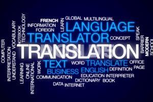 Portfolio for Translation (English to Hindi / Punjabi)