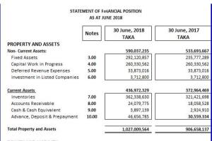 Portfolio for Preparation of Financial Statement