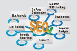 Portfolio for Internet Marketing / Branding