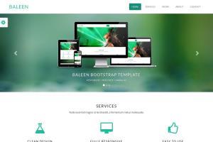 Portfolio for PSD to Wordpress Theme Development