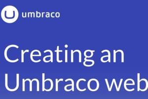 Portfolio for Umbraco CMS expert