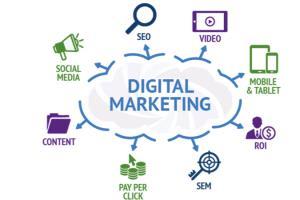 Portfolio for SEO and Digital Marketing
