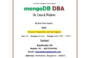 Portfolio for MySQL&MongoDB Support