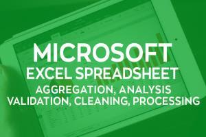 Portfolio for Microsoft MS Excel
