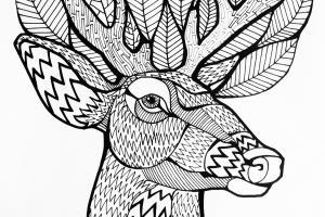 Portfolio for Digital art & Illustrations