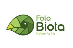 Portfolio for Logo and Branding Design