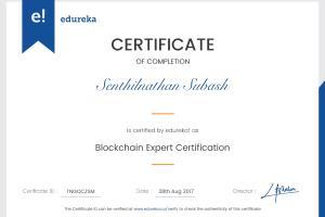 Portfolio for Blockchain/Ethereum/ICO Expert