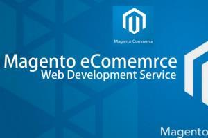 Portfolio for Magento Development Services