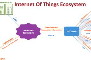 Portfolio for The Internet of Things