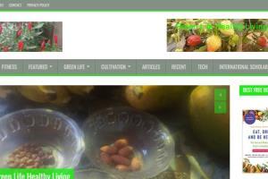 Portfolio for Website Content Writing, Editing, Blog