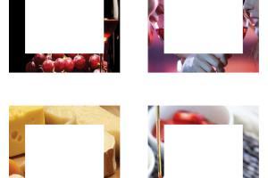 Portfolio for Branding Design and Graphic Development