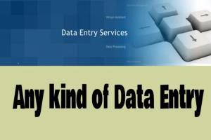 Portfolio for I Will Do Any Kind Of Data Entry