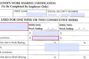 Portfolio for Make fillable pdf form
