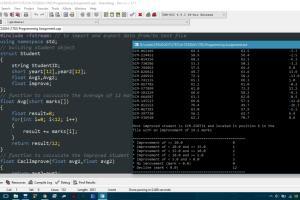 Portfolio for C++ assignment solver
