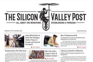 Portfolio for Professional newspaper. Print or digital