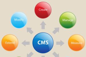 Portfolio for Content Management System