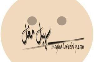 Portfolio for Language & Culture Consultant