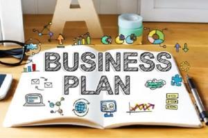 Portfolio for I will write  professional business plan