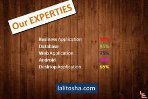 Portfolio for Founder & Delivery Head of lalitosha.com