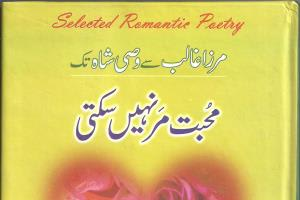 Portfolio for Urdu Writer