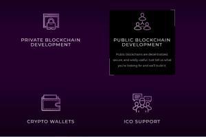 Portfolio for Develop Iota ,Byteball Tangle  Platform