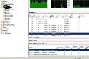 Portfolio for SQL Server Database