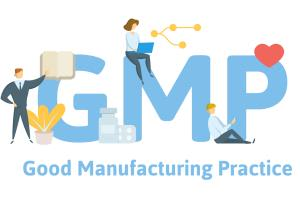 Portfolio for Create ISO/GMP QMS for your organization