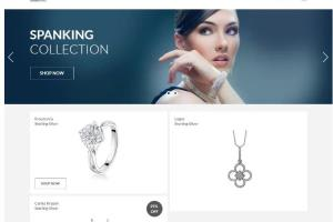 Portfolio for Ecommerce site using Shopify
