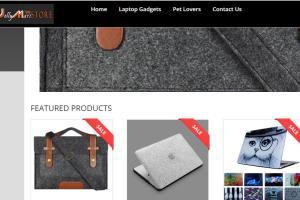 Portfolio for Pro  WordPress website designer
