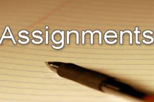 Portfolio for Academic Writer