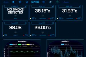 Portfolio for Real-Time Monitoring System