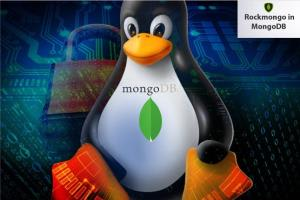 Portfolio for MongoDB Server Configuration & Admin