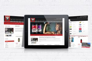 Portfolio for WordPress Website Blog Development