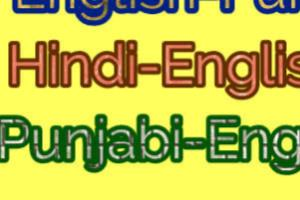 Portfolio for Translator (HINDI , PUNJABI, ENGLISH)