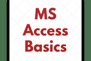 Portfolio for Microsoft Ms Access