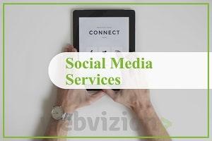 Portfolio for Social Media Marketing/SMO Services