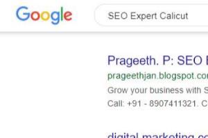 Portfolio for SEO Guru Prageeth