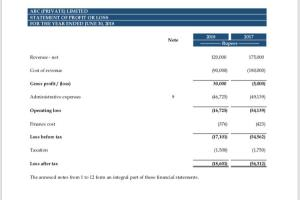 Portfolio for Financial Statements and Related Notes
