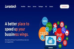 Portfolio for Website Design & Development Freelance