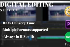 Portfolio for I will edit a professional video for you