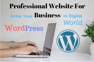 Portfolio for Professional WordPress website, SEO